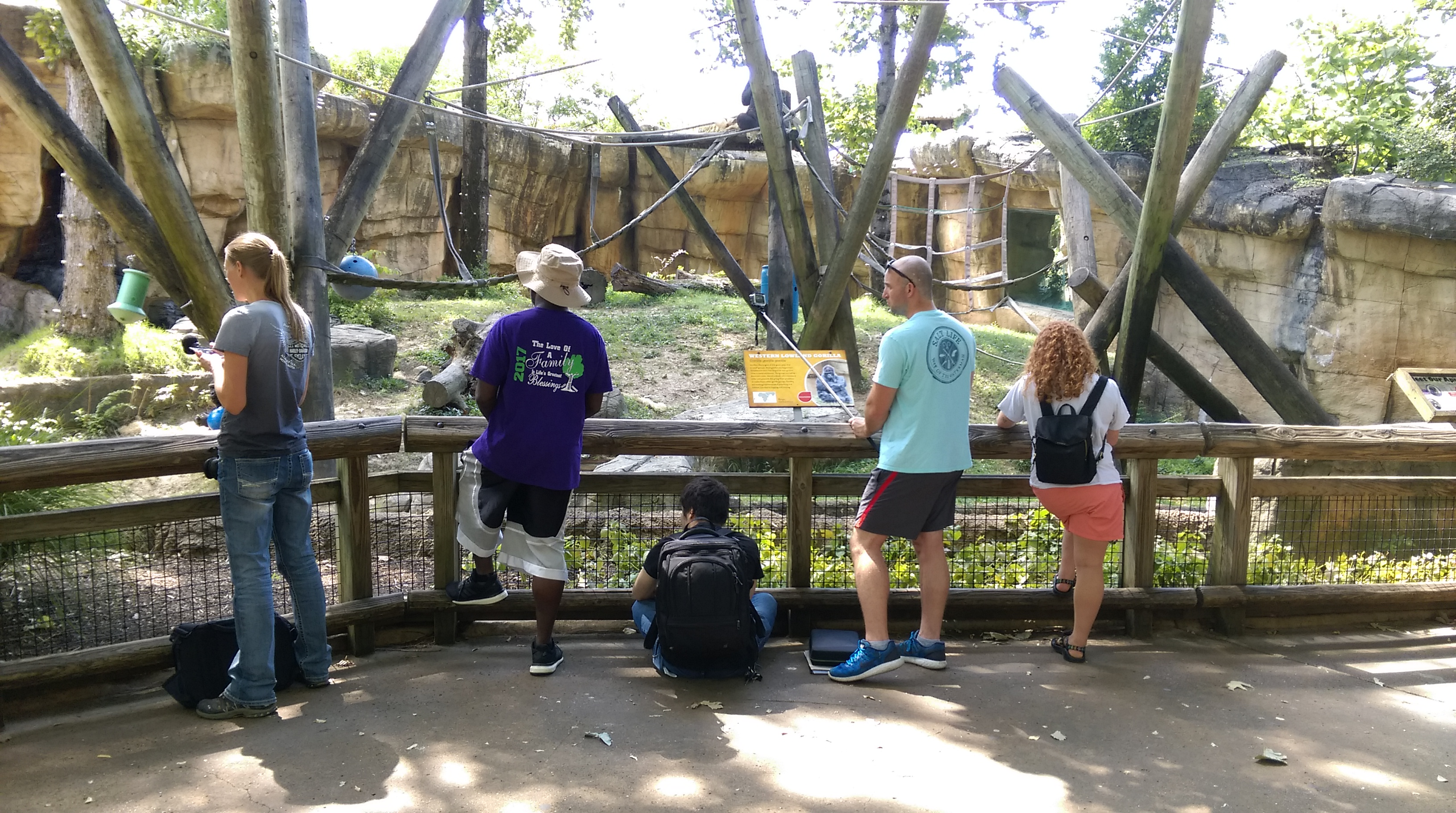 Biological anthropology students study primate behavior at Memphis Zoo